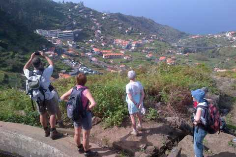 Madeira: Levado do Norte 2-Hour Hiking Tour