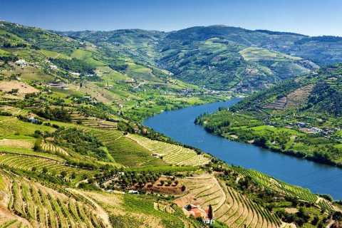 Douro Valley and River Full-Day Heritage Hike