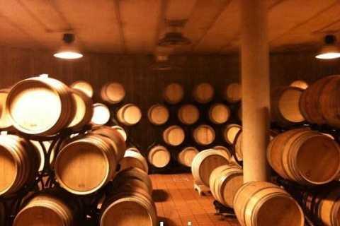 Montalcino Wine Tasting 1-Day Tour de Umbria