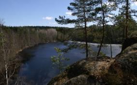 Nuuksio National Park: Half-Day Trip from Helsinki