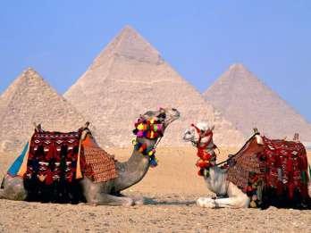 Ab Hurghada: Tagestour zu den Highlights von Kairo und Gizeh