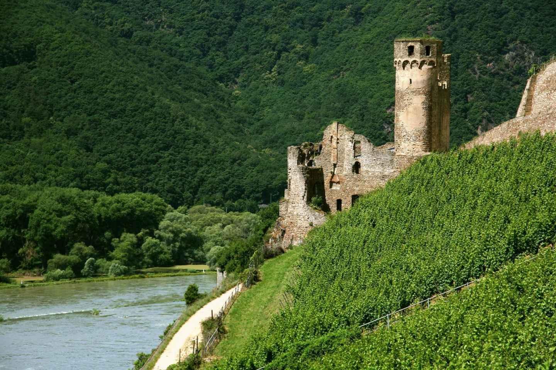 Schwimmende Weinprobe auf dem Rhein ab Rüdesheim