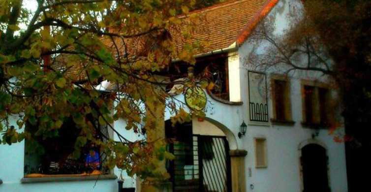 Budapest: tour privato di 6 ore a Szentendre