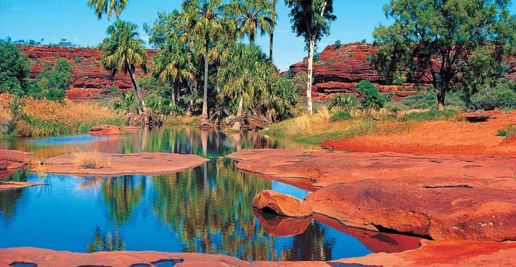From Alice Springs: Palm Valley 4WD Outback Safari + Picnic
