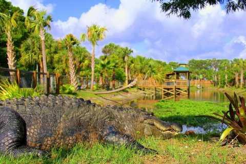 Orlando: Wild Florida Park Entrance & Alligator Show