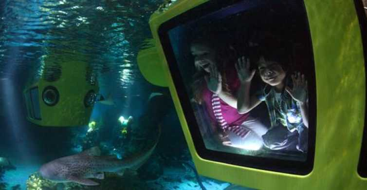 LEGOLAND® Windsor Tickets: Full-Day from London