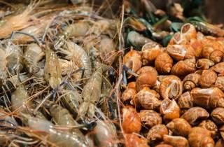 Bangkok Chinatown: 3,5-stündige kulinarische Tour