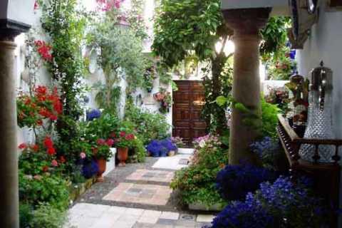 Cordoba: Flower Courtyards Walking Tour in Spanish
