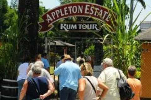 Appleton Estate Rum Tour: Full Day from Montego Bay