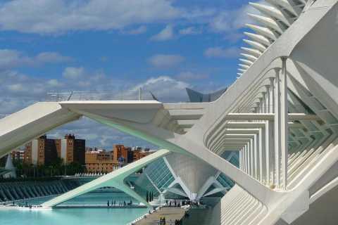 Hoogtepunten van Valencia: privérondleiding van een halve dag