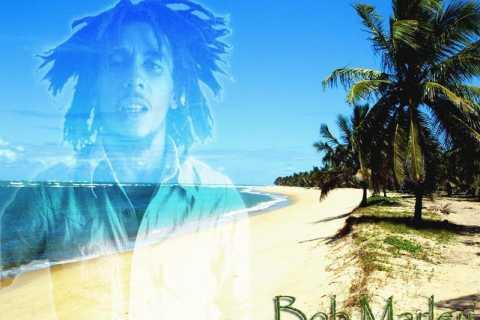 Montego Bay: Bob Marley Tour to 9 Mile, St. Ann