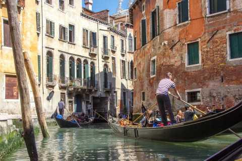Venezia: tour guidato di un giorno con partenza da Milano