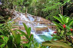 Dunn's River Falls e Ocho Rios: 5 horas de excursão pela costa norte