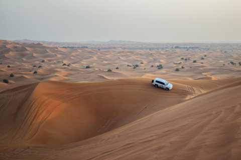 Dubai: Morning Desert Safari