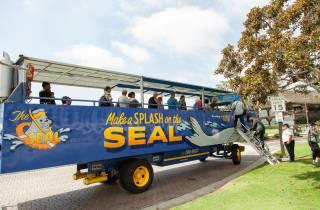 90 Minuten San Diego SEAL-Tour