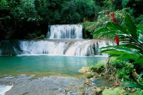 Jamaica: Black River Safari, YS Falls & Appleton Rum Estate