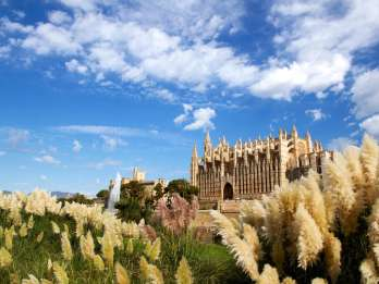 Palma: Private, geführte Tour zu Fuß