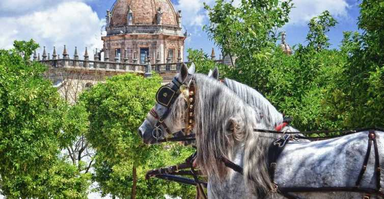 Jerez: Historic Center Guided Tour
