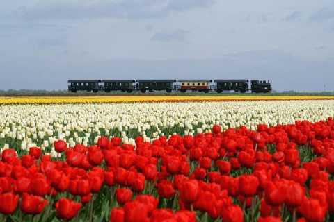 North Holland by Steam Ship & Steam Train Full-Day Tour