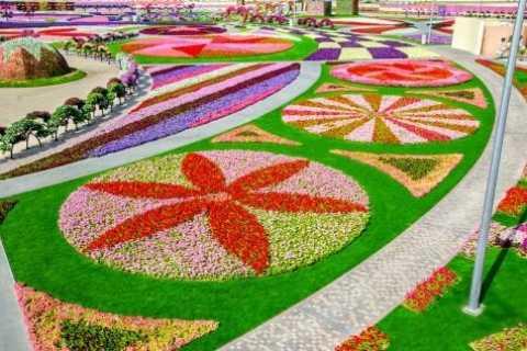 Dubai: Miracle Garden Entry with Transfer Service