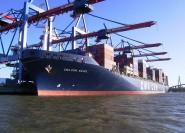 Porto di Amburgo: crociera privata o condivisa in tedesco