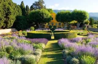 Provence Le Grand Tour: Tagestour ab Avignon