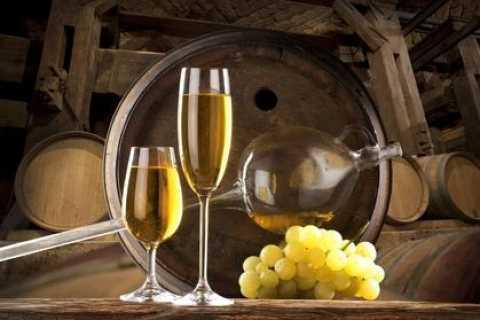 Etyek Village Private 4-Hour Wine Tour from Budapest