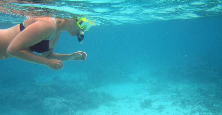 Une journée à Key West au départ de Miami avec options