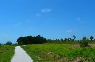 Abenteuer in den Everglades & Miami - Tagestour von Orlando