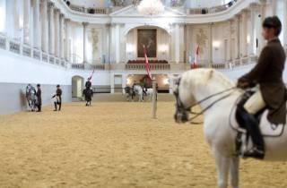 Wien: Spanische Hofreitschule - Training