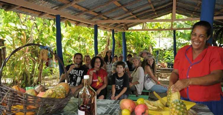 Desde Punta Cana: aventura dominicana de día completo