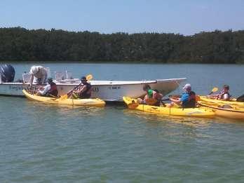 Everglades Nationalpark: Boot, Kayak & Rundgang Öko-Tour