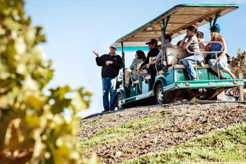 Premium Napa e Sonoma Wine Tour con pranzo