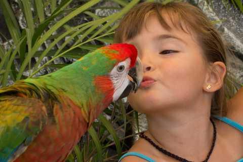 Los Cabos Animal Sanctuary Experience