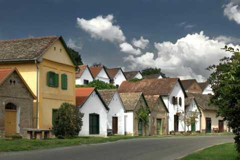 Excursão de um dia a Pécs e Siklós com degustação de vinhos Villány