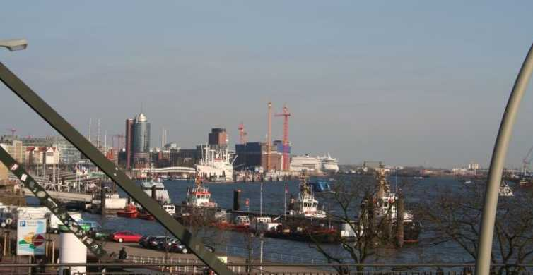 Hamburg: Private 75-Minute Tour of St. Pauli