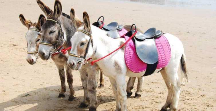 Agadir: 2 ore Donkey giro