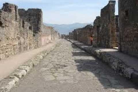 Pompeii Excavations: Private Full-Day Tour vanuit Napels