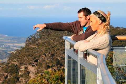 Illawarra Fly Treetop Walk with Sunrise Option