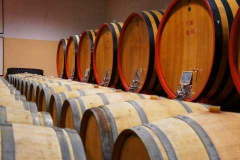 Brunello di Montalcino Full-Day Wine Tour with Tastings