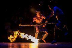Parque Xcaret: Ingresso de 1 Dia com Espetáculo Noturno