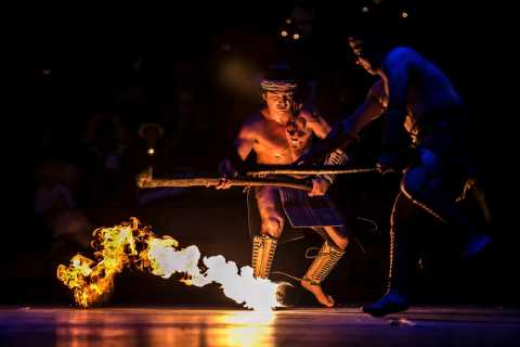 Xcaret Park: Basic Full-Day Ticket with Night Show