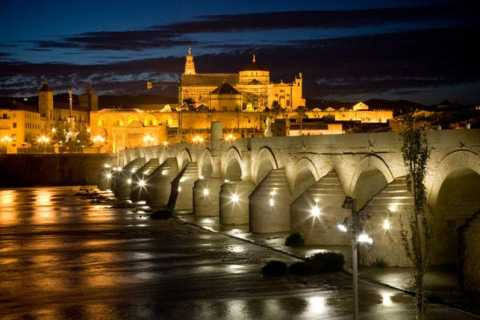 Cordoba Guided Day Trip from Seville