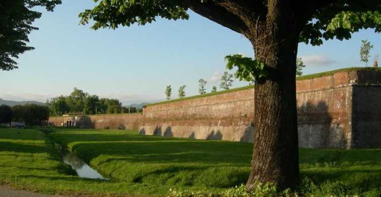 Lucca: Semi-Private 3-Hour Highlights Tour