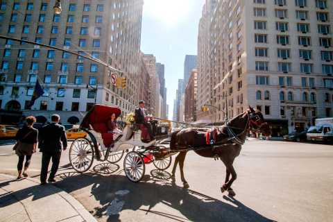 Central Park: Horse and Carriage Ride
