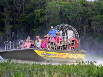 Orlando Everglades: Halbtägige Tour mit VIP-Option