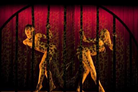 Paris: Cruzeiro das Luzes e Show Burlesco no Crazy Horse