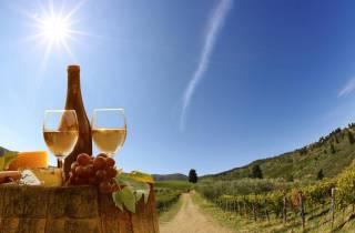 Ab Pisa oder Lucca: Halbtägige Chianti-Weinprobe in der Toskana
