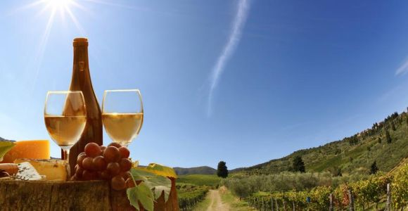 Half-Day Tuscan Hills Wine Tasting From Pisa or Lucca