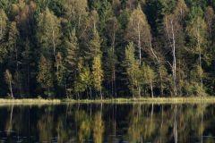 Caminhada de meio dia Parque Nacional Sipoonkorpi: Trolls 'Trail